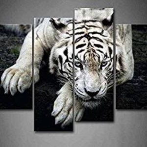 Other - New - 4 panel Tiger, black and white print on canv